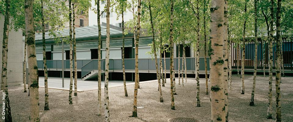 L 39 architecture d 39 aujourd 39 hui g nther vogt nature and for Vogt landscape architects