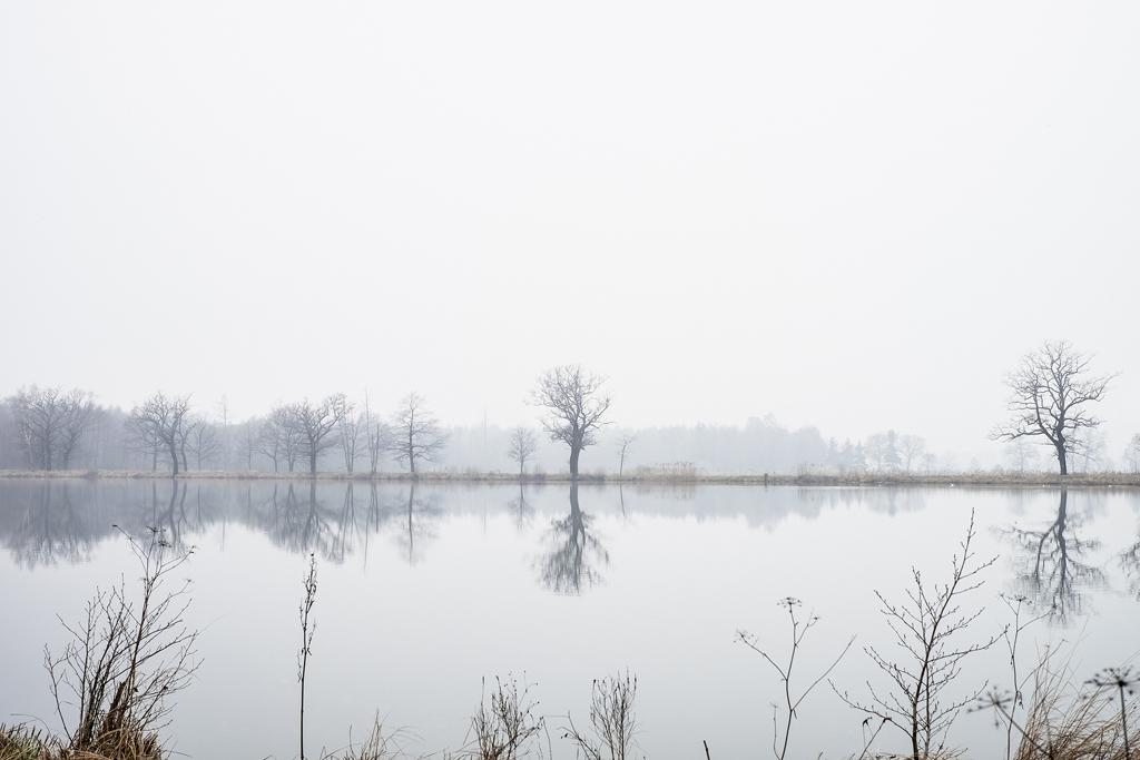 © Frédérique Bretin