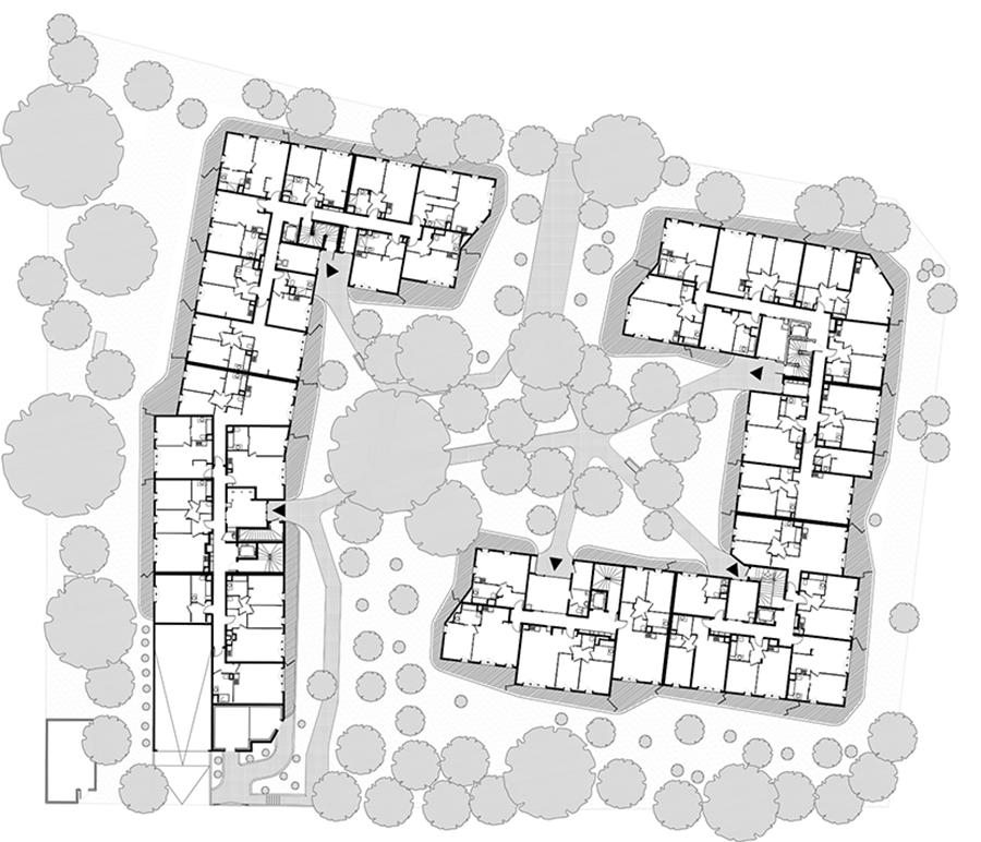 Plan du rez-de-jardin ©Pietri Architectes