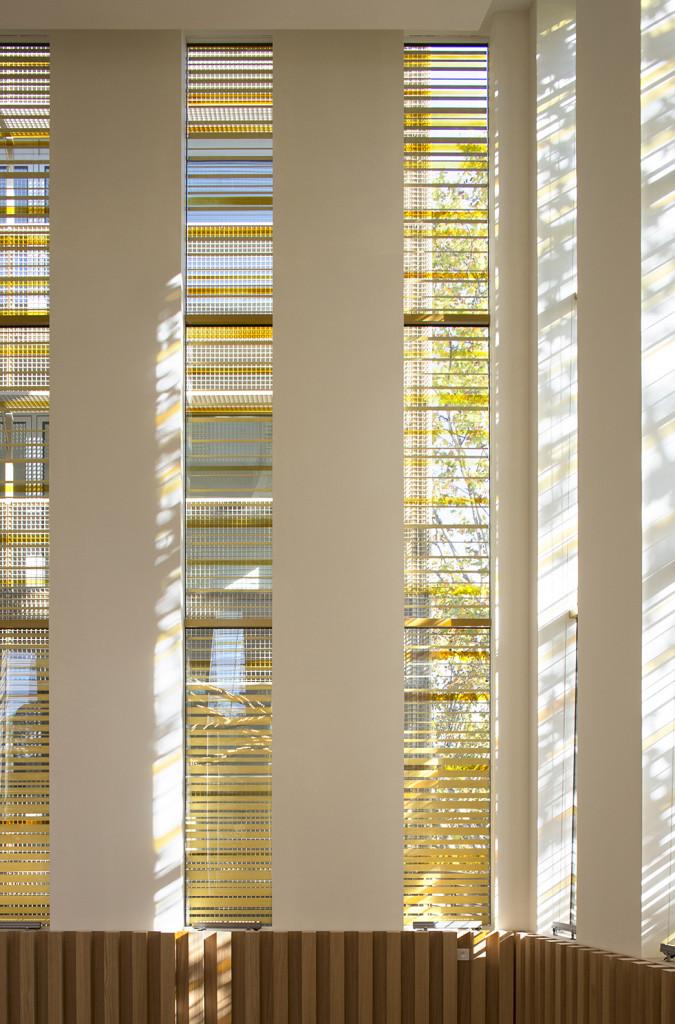 Vitraux du Centre Européen du Judaïsme,  Emmanuel Barrois, 2020, © Clément Guillaume